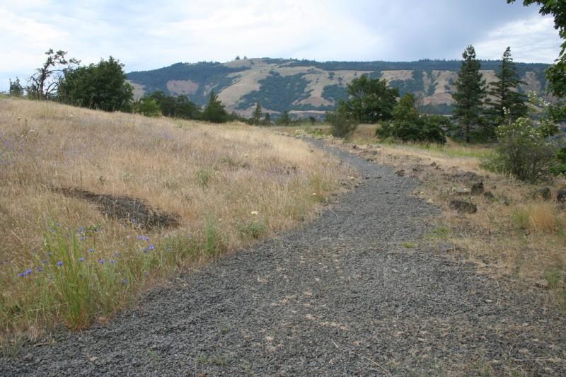 A Gravel Path Heading Toward the River