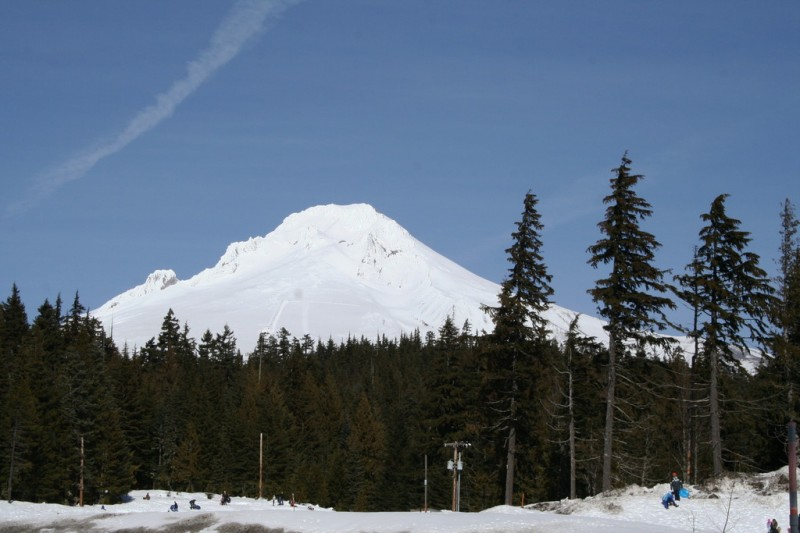 Mt. Hood From Trillium Lake Sno Park