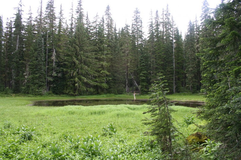 First view of what we assume is Cache Meadow
