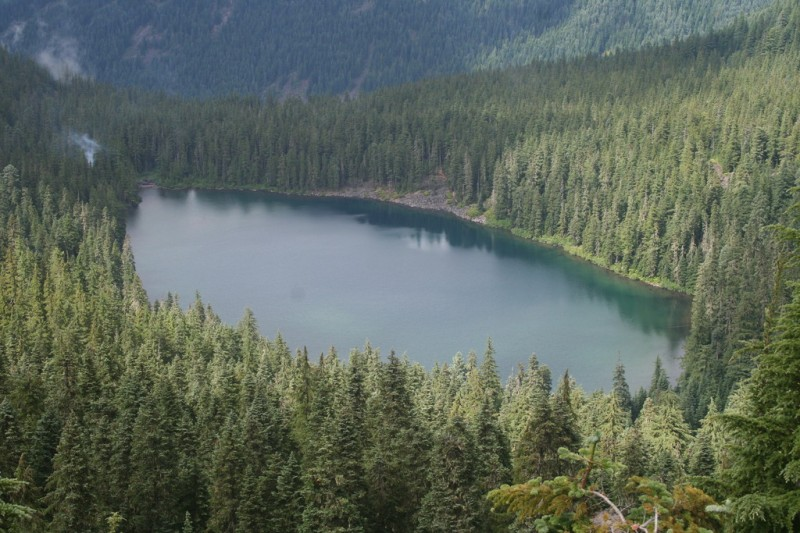 Serene Lake from the viewpoint