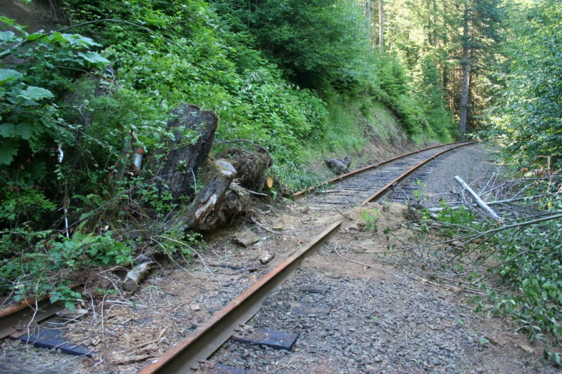 Wider view of the mudslide on the track