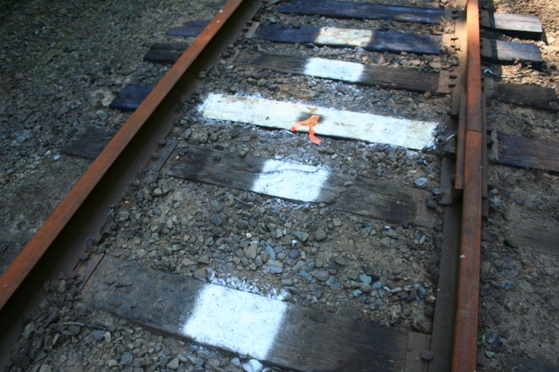 White markings on the railroad ties