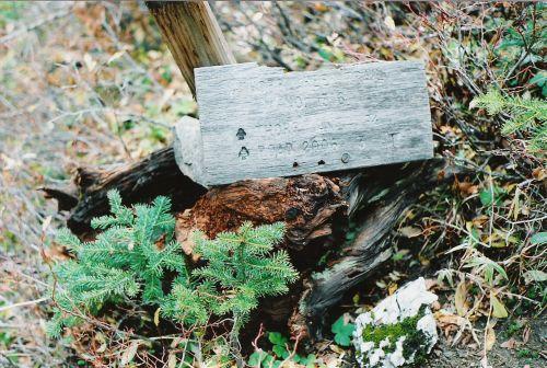 Thorp Lake Sign & More Quartz