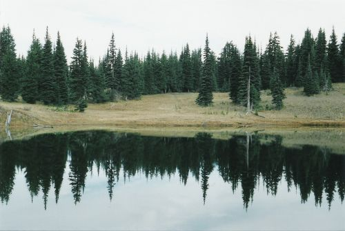 Horizontal View of Sheep Lake