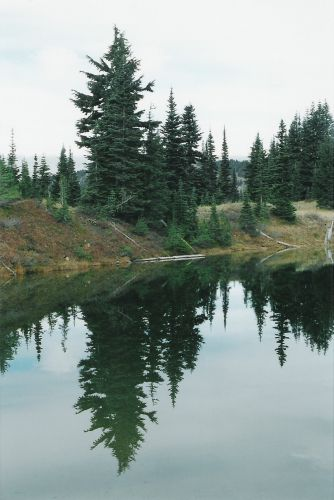 Vertical View of Sheep Lake