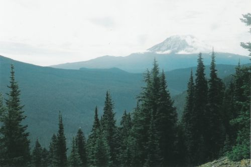 Mt. Adams After Camp