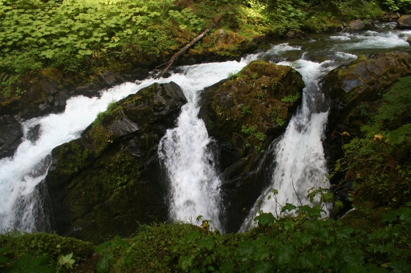 Close up view of the precipice of Sol Duc Falls