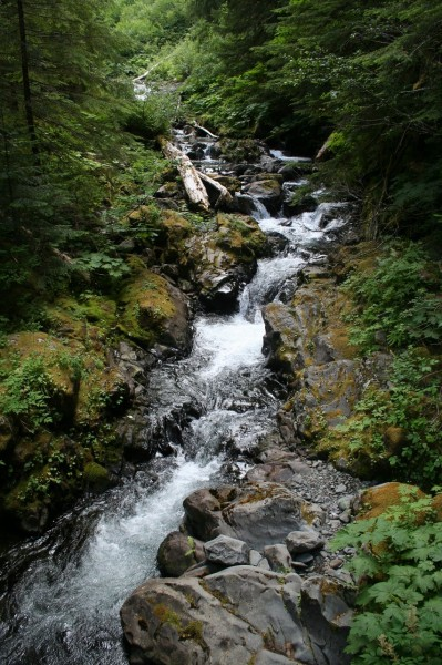 Cascades on Canyon Creek