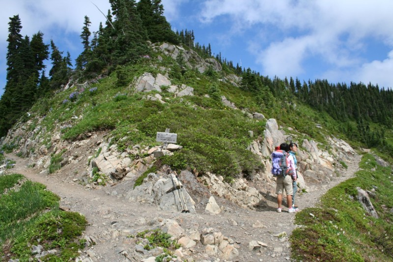 Three way trail intersection, to Deer Lake to the left, Heart Lake to the right, and Hoh Lake behind (where the photo was taken from)
