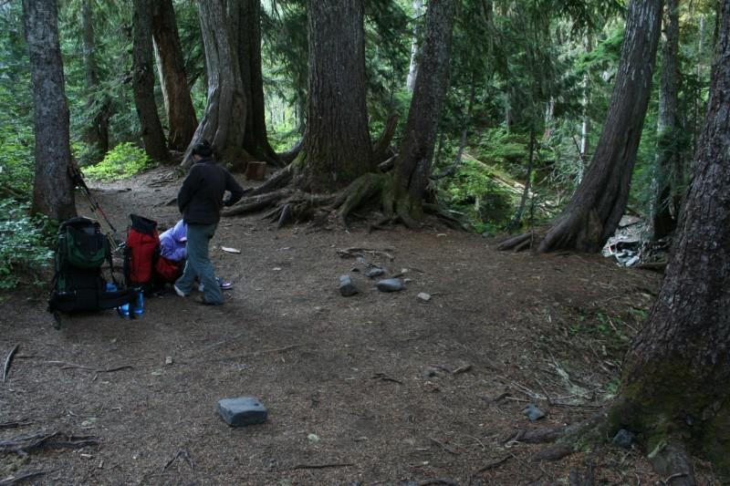 Campsite at Sol Duc Park