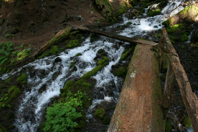Single log bridge crossing a cascade on Sol Duc River